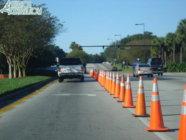 Disney lining the entrance with cones
