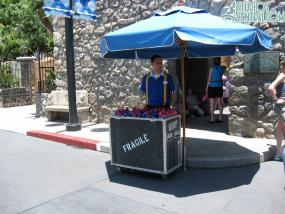 A new stand near the Tower of Terror FASTPASS machines selling those fans that spray water
