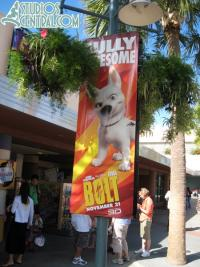 More Bolt banners