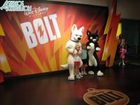 Bolt and Mittens are available for meet-n-greet
