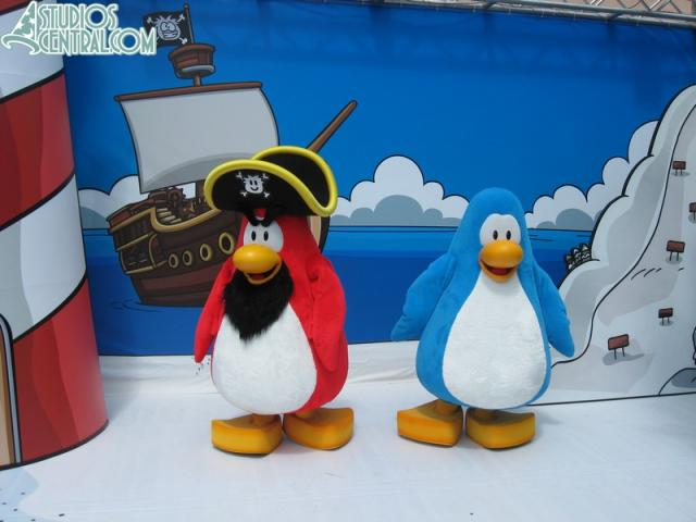These are the two penguins available to meet.