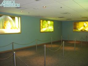 "There are still ""Bolt"" photos in the queue behind the character area"