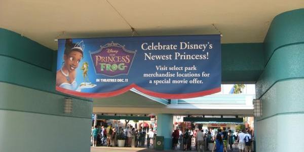 Princess and the Frog Banner