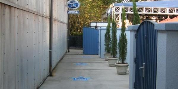 American Idol Experience path to audition