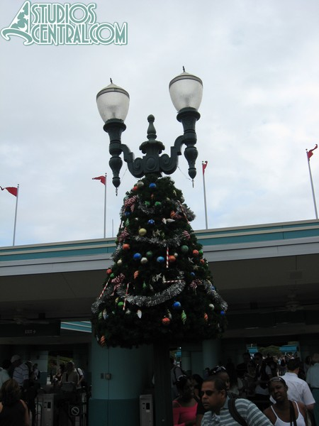 These mini trees decorate Hollywood Boulevard lamp posts